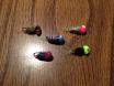 bluegill bugs